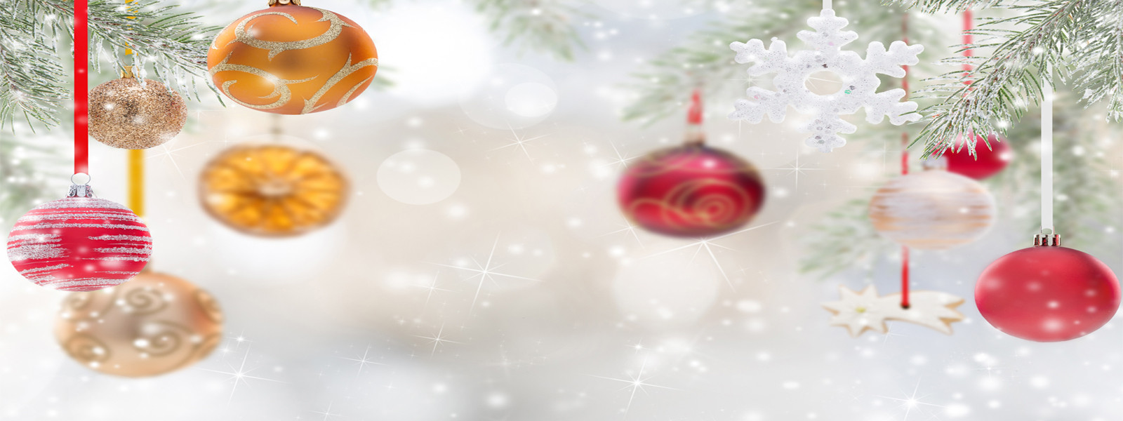 HOLIDAY DELIVERY PROMOTION 10% OFF ON ORDERS ABOVE $50 12 NOON TO 9 PM PROMOCODE: ORDERDIRECT